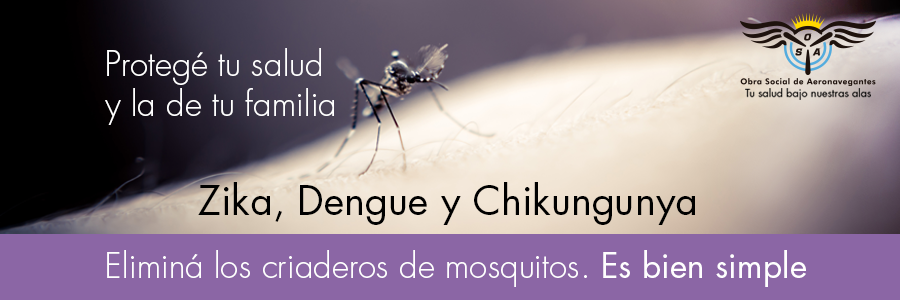 denguepagina